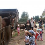 kids_paradise_petrzalka_016
